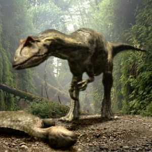 an introduction to the fossilized story of mr allosaurus Why were there so many fossils of the allosaurus, a large therapod dinosaur   this story has been updated to include the state where the.